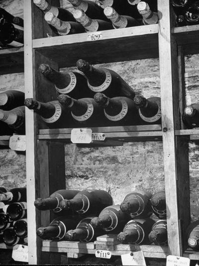 Dust Covered French Vintage Champagnes Lying on Racks in the Wine Cellar--Photographic Print