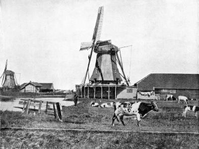 Dutch Windmills, Holland, Late 19th Century-John L Stoddard-Giclee Print