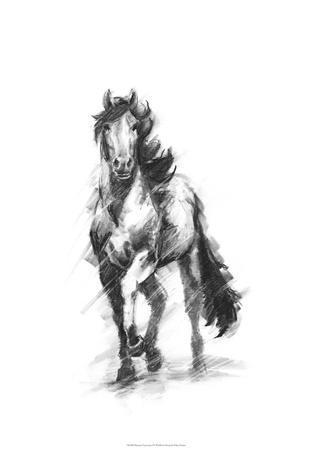 Dynamic Equestrian I-Ethan Harper-Premium Giclee Print