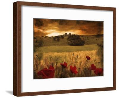 Dynazz-Fabio Panichi-Framed Premium Photographic Print