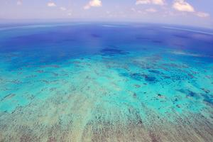 Great Barrier Reef, Cairns Australia, Seen from Above by dzain