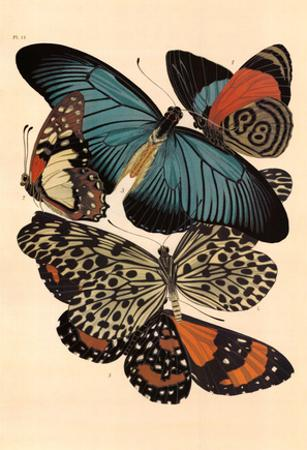 Butterflies I by E. A. Seguy
