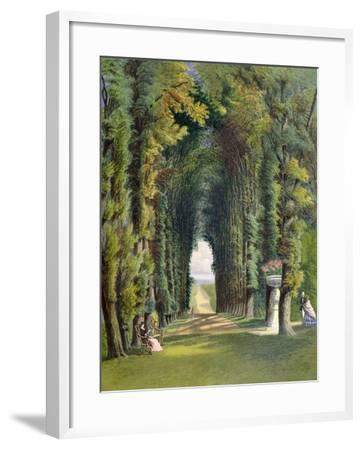 """Vista in the Gardens of Teddesley, from """"Gardens of England,"""" Published 1857"""