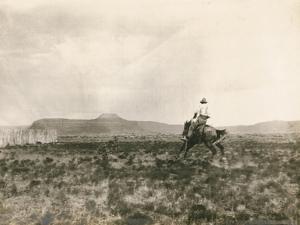 A Buck Jumper, 1906 by E. B. Gibbes