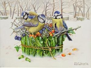 Blue Tits in Leaf Nest, 1996 by E.B. Watts