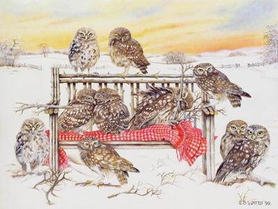 Little Owls on Twig Bench, 1999