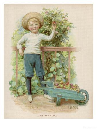 Boy Picks Apples from a Conveniently Low-Hanging Tree Filling a Wheelbarrow