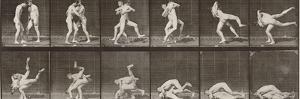 """Album sur la décomposition du mouvement : """"Animal locomotion"""", 1872/85. Lutte de deux hommes nus by Eadweard Muybridge"""