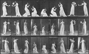 Album sur la décomposition du mouvement:Animal Locomotion: femme versant de l'eau by Eadweard Muybridge