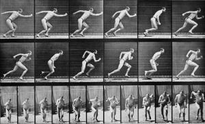 Athlete Starting on a Race by Eadweard Muybridge