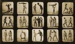 Athletes Posturing, from the 'Animal Locomotion' Series, C.1881 by Eadweard Muybridge