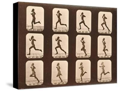 Image Sequence of Athletes. Running, 'Animal Locomotion' Series, C.1881