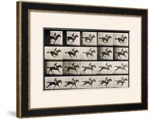 "Jockey on a Galloping Horse, Plate 627 from ""Animal Locomotion,"" 1887 by Eadweard Muybridge"
