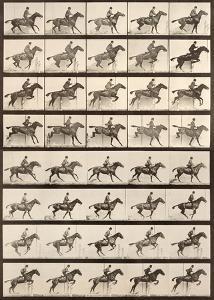 Jumping a Hurdle by Eadweard Muybridge