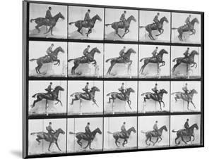 Man and Horse Jumping a Fence, Plate 640 from Animal Locomotion, 1887 by Eadweard Muybridge