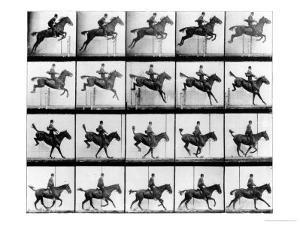 "Man and Horse Jumping, from ""Animals in Motion"", London, Published 1907 by Eadweard Muybridge"