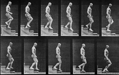 Man Descending Stairs, from 'Animal Locomotion', 1887 (B/W Photo)