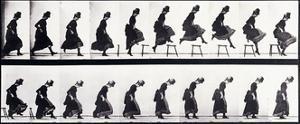 Motion Study, C.1872-1885 by Eadweard Muybridge