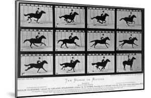 Movements of a Galloping Horse by Eadweard Muybridge