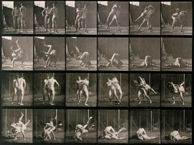 Two Men Wrestling, Plate 348 from Animal Locomotion, 1887