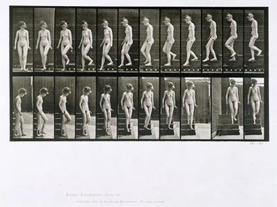 Woman Descending Steps, Plate 137 from 'Animal Locomotion', 1887 (B/W Photo)
