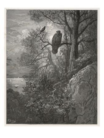 Eagle and Magpie--Giclee Print