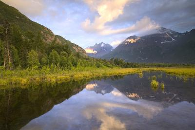 Eagle and Polar Bear Peak Reflected in Marsh Eagle River Valley Chugach Sp Ak Sc Summer-Design Pics Inc-Photographic Print