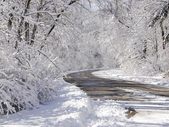 Eagle Creek City Park, Indianapolis, Indiana, Usa-Anna Miller-Photographic Print
