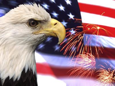 Eagle, Firework, Patriotism in the USA-Bill Bachmann-Photographic Print