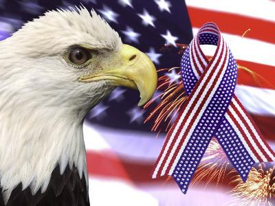 Eagle, Fireworks, Ribbon, and Flag-Bill Bachmann-Photographic Print