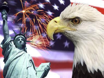https://imgc.artprintimages.com/img/print/eagle-fireworks-statue-of-liberty_u-l-p42a9u0.jpg?p=0