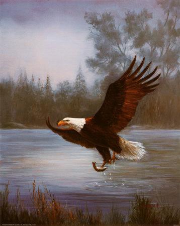 https://imgc.artprintimages.com/img/print/eagle-fishing_u-l-ejuoy0.jpg?p=0
