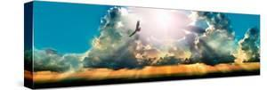 Eagle Flying in the Sky with Clouds at Sunset