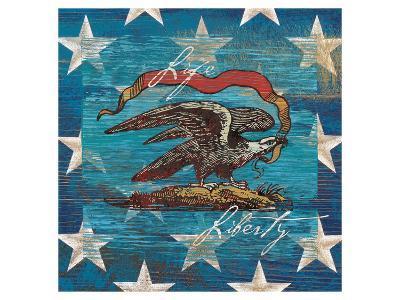 Eagle I Stars-Alan Hopfensperger-Art Print
