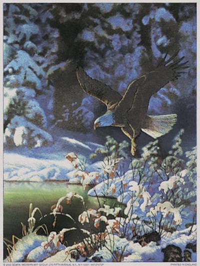 Eagle in Winter Scene-Michelle Mara-Art Print