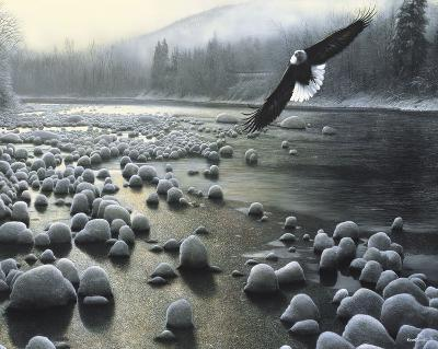 Eagle Over Water-Kevin Daniel-Art Print