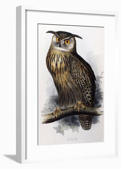 """Eagle Owl, Lithographic Plate from """"The Birds of Europe""""-John Gould-Framed Giclee Print"""