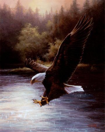 https://imgc.artprintimages.com/img/print/eagle-prey_u-l-ep9fl0.jpg?p=0