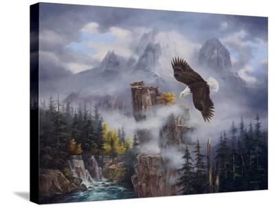 Eagle's Domain-Rudi Reichardt-Stretched Canvas Print