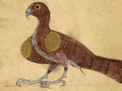 Eagle-Aristotle ibn Bakhtishu-Giclee Print