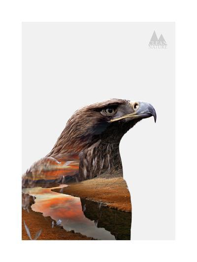 Eagle-PhotoINC-Art Print
