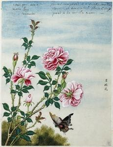 Early 19th-Century Chinese Watercolor of Pink Roses