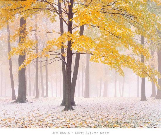 Early Autumn Snow-Jim Becia-Art Print