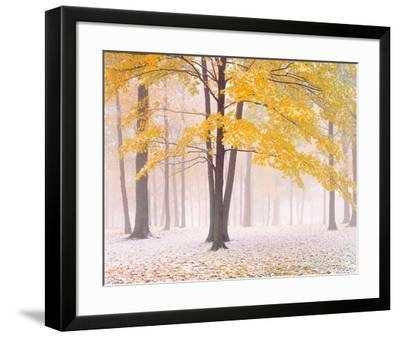 Early Autumn Snow-Jim Becia-Framed Art Print