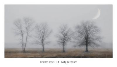 Early December-Heather Jacks-Art Print