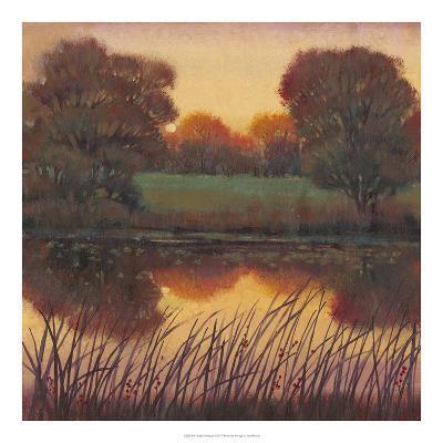 Early Evening I-Tim O'toole-Art Print