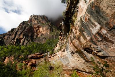 Early Morning in Zion National Park in Utah, USA-Jill Schneider-Photographic Print