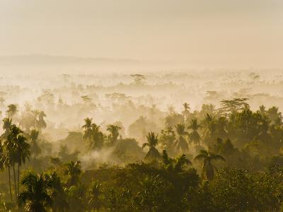 Early Morning Mist on the Kedu Plain at Sunrise from the Borobudur Temple, Java, Indonesia-Matthew Williams-Ellis-Photographic Print