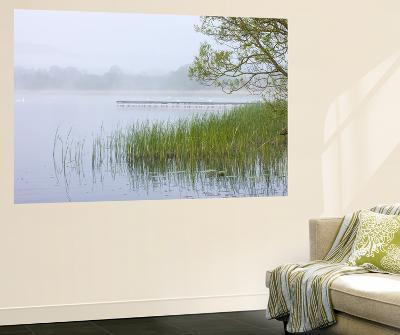 Early Morning Mist Shrouds Llangorse Lake in the Brecon Beacons National Park, Powys, Wales. Spring-Adam Burton-Wall Mural
