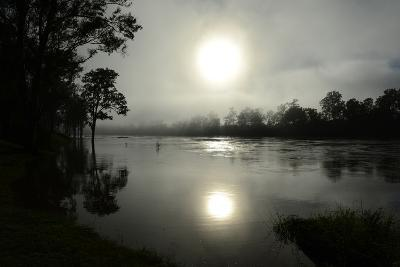 Early Morning Sun Rises Through the Fog over the Swollen Brisbane River-Dan Peled-Photographic Print